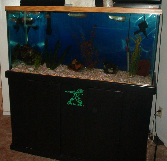 fish tank 80 gallon 80 gallon marine fish tank aquarium